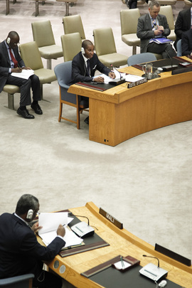 Security Council Adopts Resolution on Mali
