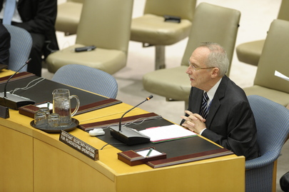 Security Council Considers Progress in Implementing UNAMID Mandate