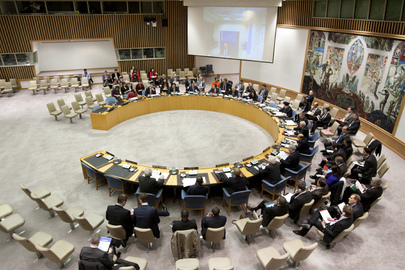Security Council Adopts Its Annual Report to General Assembly