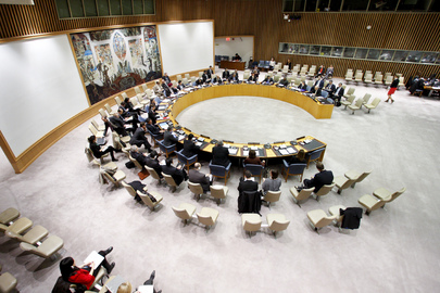 Security Council Discusses Bosnia and Herzegovina