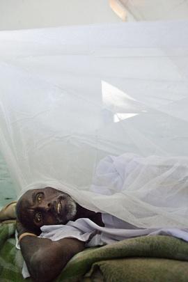 West Darfur Hospital Combats Yellow Fever Spread