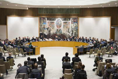 Security Council Authorizes Renewal of E.U. Force in Bosnia and Herzegovina