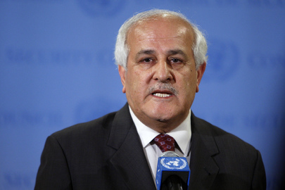 Palestinian Representative Briefs Press