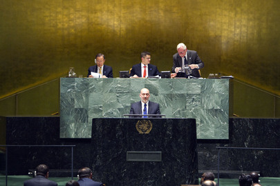 Assembly Grants Palestine Non-member Observer State Status