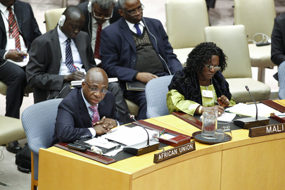 Security Council Briefed on Situation in Mali