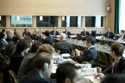 "Palais des Nations ""Group of Friends"" Holds Meeting in Geneva"