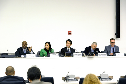 "Briefing Held on ""Growth and Employment Consultations in Post-2015 Development Agenda"""