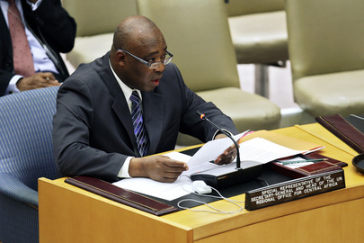 Security Council Briefed on Central Africa