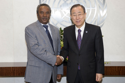Secretary-General Meets Head of Abyei Mission