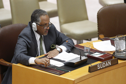 Security Council Considers UNAMID