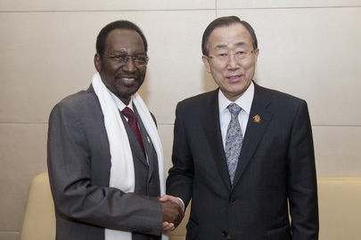 Secretary-General Meets Interim President of Mali