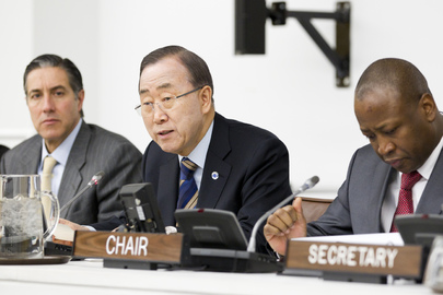 Secretary-General Addresses Palestinian Rights Committee