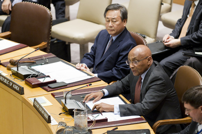 Security Council Considers Situation in Guinea-Bissau