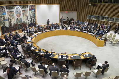 Security Council Extends Expert Panel on Sudan Sanctions