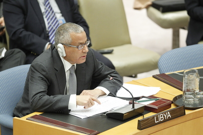 Security Council Extends Libya Mission for One Year