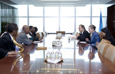 Secretary-General Meets Head of Darfur Regional Authority