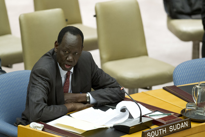 Security Council Discusses UN Mission in South Sudan