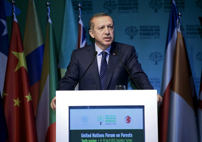10th Session of the United Nations Forum on Forests in Istanbul