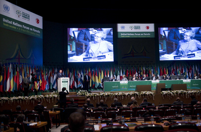 Opening of Tenth Session of UN Forum on Forests