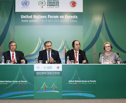 Press Conference on Tenth Session of UN Forum on Forests