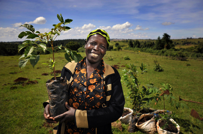 "UN Forum on Forests Photo Competition Winner: ""Face of the Mau: Community Leader Planting Trees"""