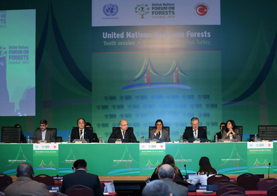 UNFF10: Ministerial Roundtable on Rio+20 Outcome and Post-2015 Agenda