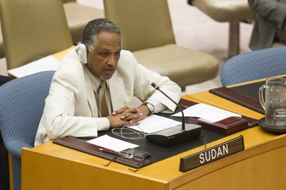 Security Council Discusses UNAMID