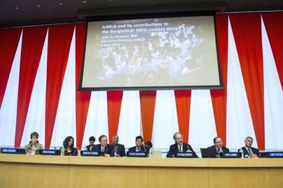 Special Event on Health-related Millennium Development Goals