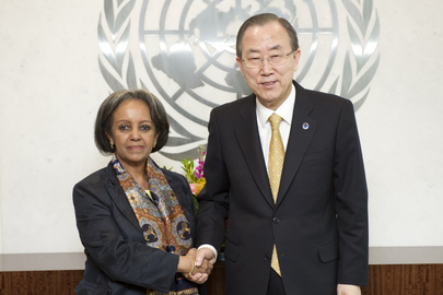 Secretary-General Meets Director-General of UNON