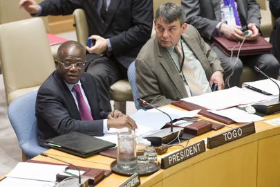 Security Council Hears from Chairs of Its Subsidiary Bodies