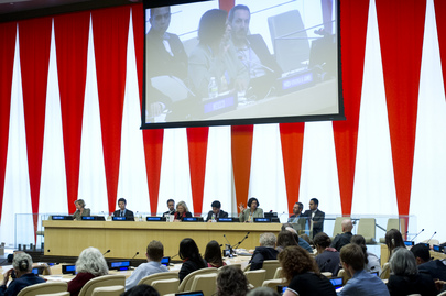 "Panel Discussion on ""Human Rights Indicators and the Post-2015 Development Agenda"""
