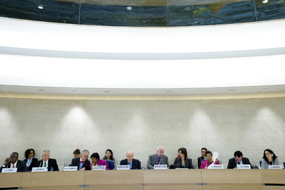 Human Rights Council Holds Panel on Contribution of Parliaments to Its Work