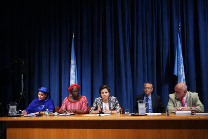 Press Conference on Launch of Report on Post-2015 Development Agenda