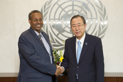 Farewell Call by Deputy Head of UNAMID