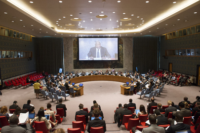 Security Council Debates Conflict Prevention and Natural Resources