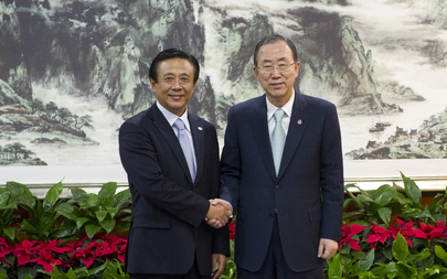 Secretary-General Meets Head of China Clean Energy Association