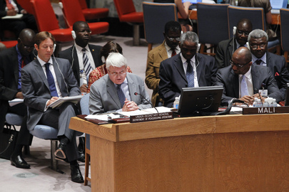 Security Council Discusses Situation in Mali