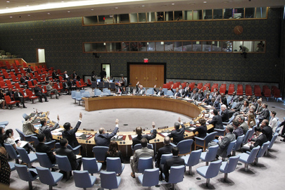 Security Council Extends UNDOF Mandate