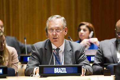 Permanent Representative of Brazil Addresses Assembly Debate on Inequality