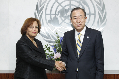 Secretary-General Meets Head of Haiti Mission