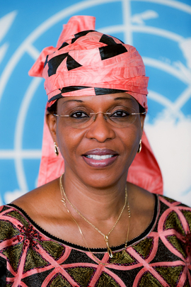 Special Representative and Head of Côte d'Ivoire Mission