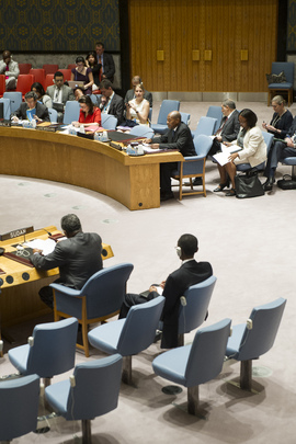 Security Council Discusses Darfur Mission