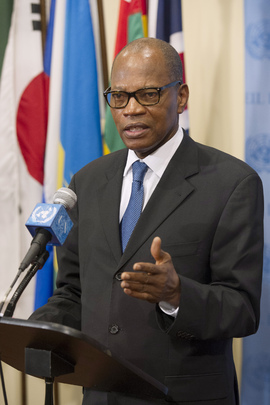 Head of Darfur Mission Speaks to Press