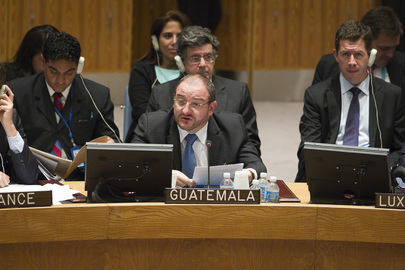 Security Council Holds Ministerial Debate on Great Lakes Region