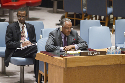 Security Council Meeting on Situation in Sudan