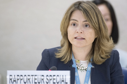 Special Rapporteur on Drinking Water and Sanitation Addresses Rights Council