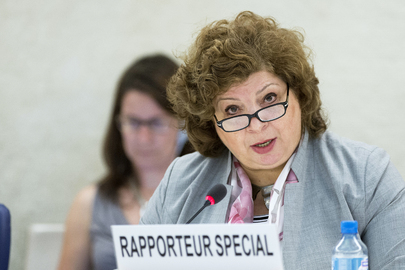 Special Rapporteur addresses Human Rights Council