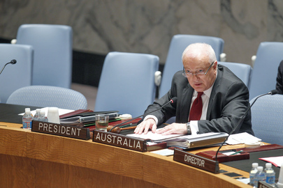 Security Council President at SC Meeting on Libya
