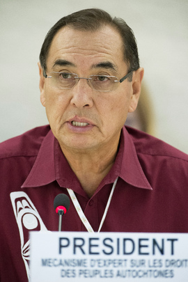 Human Rights Council Holds Dialogue on Rights of Indigenous Peoples