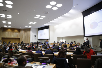 High-Level Meeting to Review Progress on MDG 5 – Maternal Health